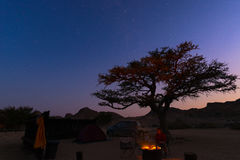 Camping site with starry sky by night. Adventure in National Park, Africa. Burning camp fire and tent with big acacia tree. Stock Photos