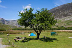 Camping in Snowdonia stock image