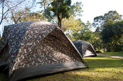 Camping Tent. Group of Camping Tent in Campsite Stock Images