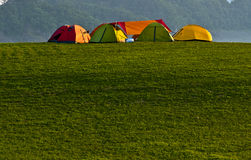 Camping tent. Many colored tent camping on the grass at sunset Stock Photos