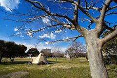 Camping tent. And blue sky at pubic park stock photography