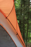 Camping Tent Against Woods. Detail of tent showing screen door and translucent rain fly filling the frame against background of tall trees. Vertical format Stock Photography