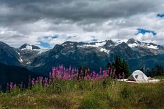 Camping tent on alpine meadows by mountains. stock photo