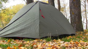 Camping Tent In Autumn Forest. Slider Shot stock video footage