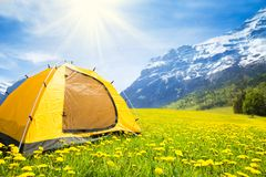Camping tent in. Big yellow family sized camping tent in the nice yellow dandelion field with mountains on background Royalty Free Stock Photography