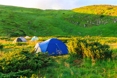 Camping tent in Carpathian mountains, sunrise morning time, summertime journey. Camping tent in Carpathian mountains, sunrise morning time, summertime journey Royalty Free Stock Photography
