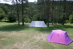 Camping tent field over green grass Stock Image