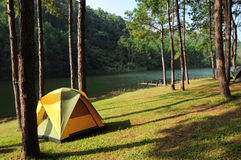 Camping tent in forest by the river Stock Images