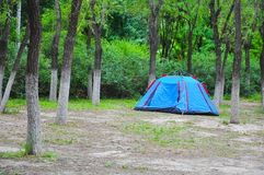 Camping Tent in forest. Camping Tent for vacation in forest royalty free stock photography