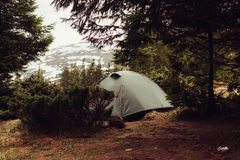 Camping tent in the forrest, morning Royalty Free Stock Image