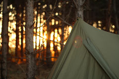 Camping tent in the forrest Stock Photo