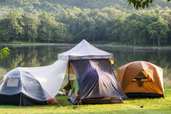Camping tent on green grass beside lake with forest background  during sunrise Stock Photos