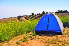 Camping Tent on hill Stock Image