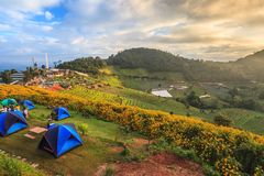 Camping tent - Mountain Landscape stock photo