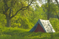Camping. Tent in the mountains at a sunny day royalty free stock image