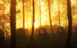 Camping tent at national park in morning Royalty Free Stock Image