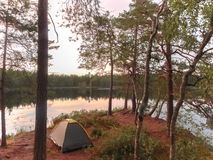 Camping near forest lake. Stock Photos