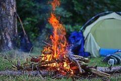 Camping tent under the pine forest and cozy bonfire near it. Travel, love and living in nature concept. Leisure