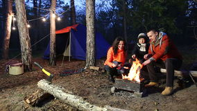 Camping and tent under the pine forest.