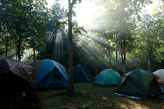 Camping tents at a camp site. With sunlight background Stock Images