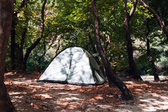 Camping Tents at Campground in Woods Stock Photo