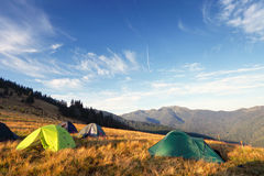 Camping tents on the meadow after sunrise Royalty Free Stock Image