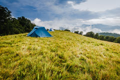 Camping in tents in the mountains Royalty Free Stock Photo