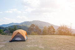 Camping Tents in Nature Royalty Free Stock Image