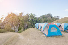 Camping Tents in Nature Stock Images