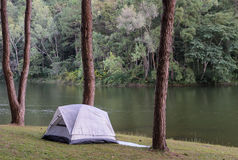 Camping tents near lake Royalty Free Stock Images
