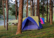 Camping tents near lake Stock Image