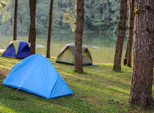 Camping tents near lake Stock Photo