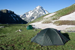 Camping tents on sunny grassland. royalty free stock image