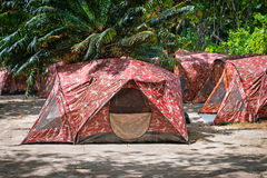 Camping with tents in tropical forest Royalty Free Stock Image