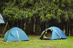 camping Twee Toeristententen in het bos royalty-vrije stock fotografie