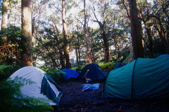 Camping at Wilson's Prom. Sealer's Cove campground at Wilson's Prom in Victoria, Australia Stock Photography