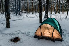 Camping in the winter forest in the cold Royalty Free Stock Photo