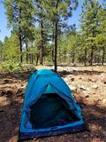 Camping in the Woods stock photography