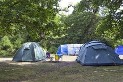 Campingowi namioty w lesie na letnim dniu Obraz Stock