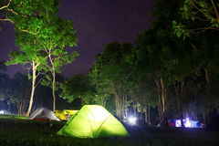 campingowy las Fotografia Stock