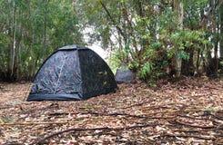 Campingowy namiot w drewnach Zdjęcia Stock