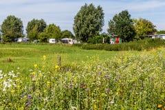 Campingplats i mitt av naturen royaltyfria bilder