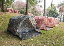 Campingplats i skogen med många tält Arkivfoton