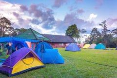 Campingplats med färgrika tält i afton royaltyfri bild