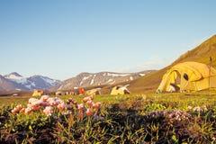 Campingplats på Alftavatn, Island Arkivbild