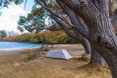 Campingplats på sjön Pearson/den Moana Rua djurlivfristaden som lokaliseras i Craigieburn Forest Park i Canterbury, Nya Zeeland royaltyfri foto