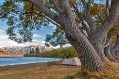 Campingplats på sjön Pearson/den Moana Rua djurlivfristaden som lokaliseras i Craigieburn Forest Park i Canterbury, Nya Zeeland fotografering för bildbyråer