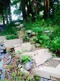 Campingplatz der Natur Lizenzfreies Stockbild