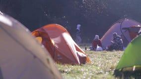 Campingplatz mit Zelten auf einem grünen Gras im Wald im Fall am nebeligen Morgen Herbstwochenendenwald, der mit Zelten wandert stock video footage