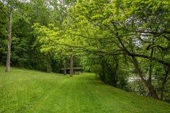 Campingplatz und Wanderung Lizenzfreies Stockbild